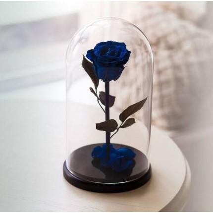 Синяя роза в колбе